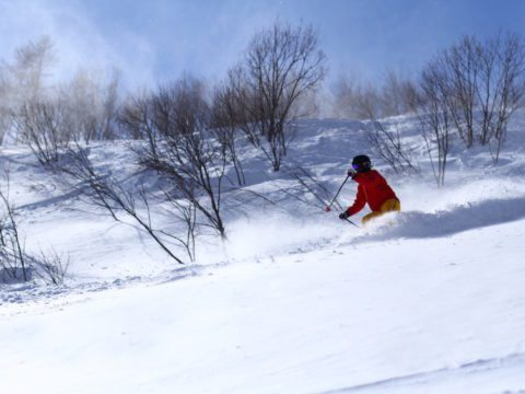 Hakuba Winter 8